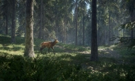 theHunter: Call of the Wild TR Steam CD Key