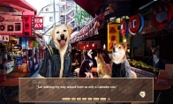 A Summer with the Shiba Inu Steam CD Key