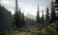 Alan Wake Collector's Edition Steam Gift