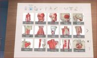 3D Organon Anatomy Steam CD Key