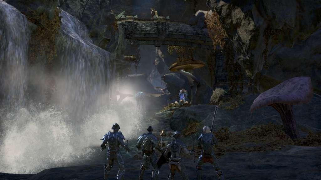 The Elder Scrolls Online: Tamriel Unlimited + Morrowind Upgrade DLC Digital  Download CD Key