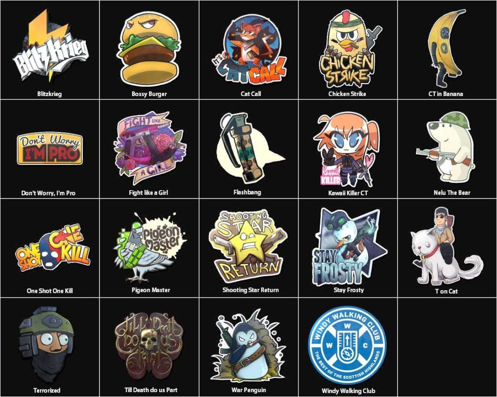 Cs Go 5 Random Stickers Kinguin Case
