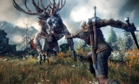 The Witcher 3: Wild Hunt GOTY Edition Steam Altergift